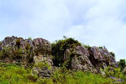 stone garden 18  april 2015 nikon  16