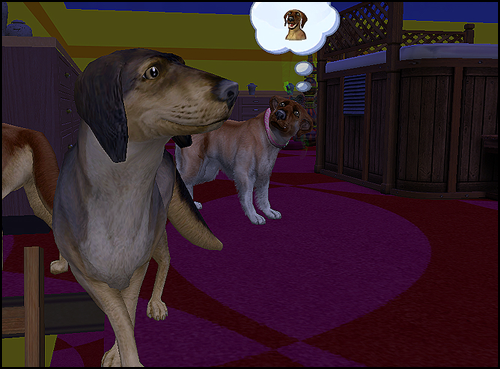 Dog4Resize