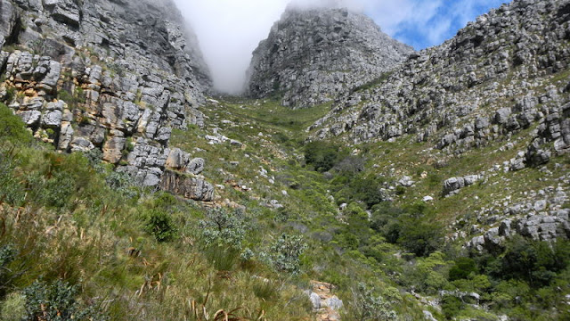 Hiking toward the clouds atop Table Mountain