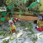Jungle Scene  WKSN (Playgroup) 16/10/2015