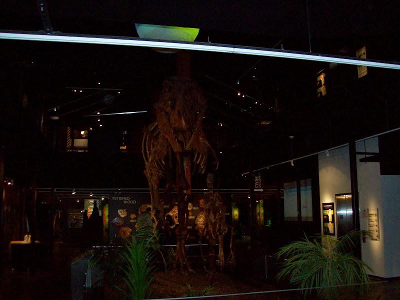 Houston Museum of Natural Science, Sugar Land - 114_6664.JPG
