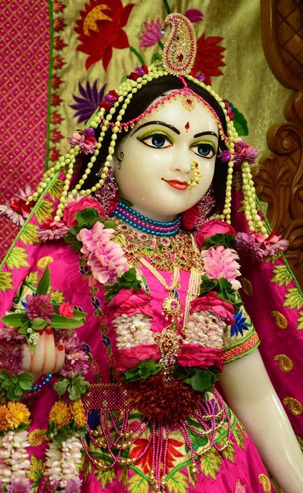 ISKCON GEV Deity Darshan 08 Jan 2017 (19)