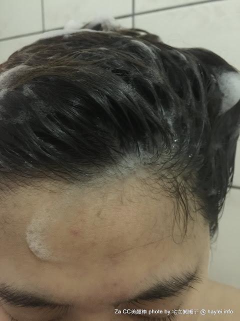 ReEn琍艷 保養珍無矽靈健髮專用洗髮精From LG生活健康 的 韓方髮學智慧 運用了 宮廷秘方 的 韓國漢方洗髮精 ! 宅女懶懶子 使用心得 美髮相關