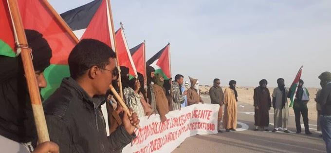 El Movimiento Solidario Español respalda a los manifestantes saharauis de El Guerguerat.