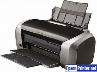 How to reset Epson R210 printer