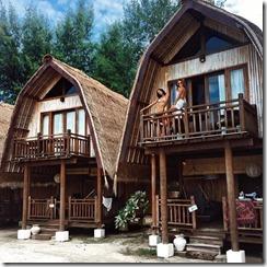 casas hermosas (50)