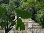 Ruienen von Palenque
