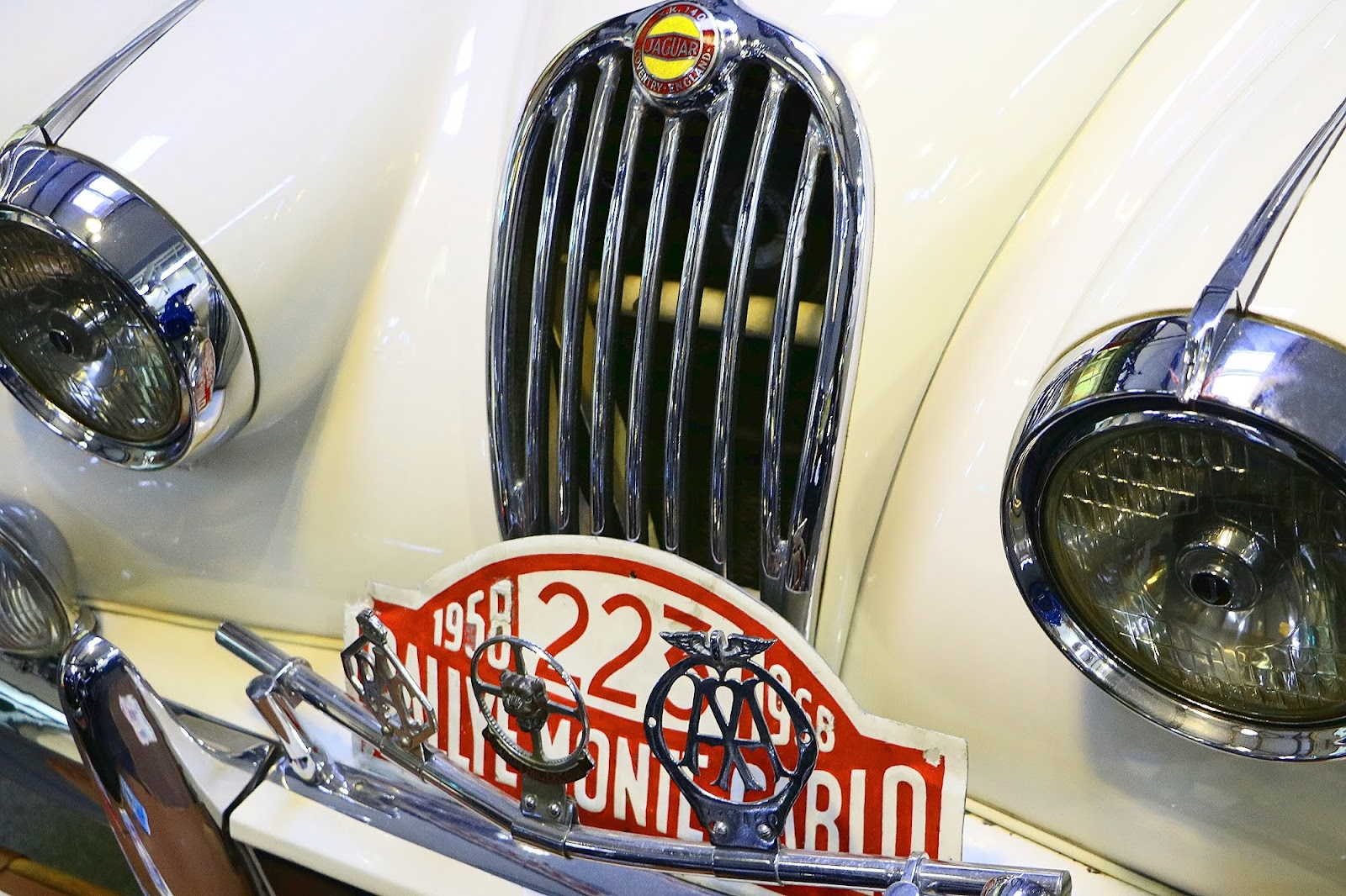 1955 Jaguar XK 140 Fixed Head Coupe.jpg