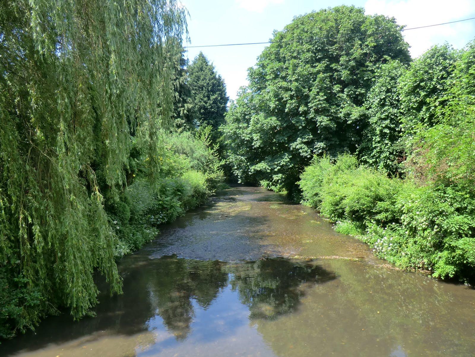 CIMG7492 River Darent from Shoreham bridge