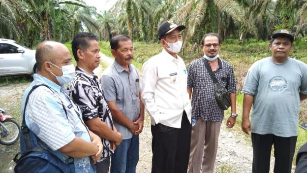 Sidak ke Lahan Perkebunan Kelapa Sawit Muara Kiawai, Wabub Pasbar Sampaikan Warning