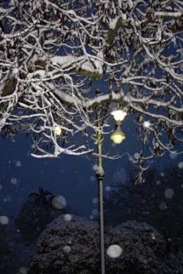 Neve (6)