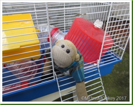Hamster Cage 3a