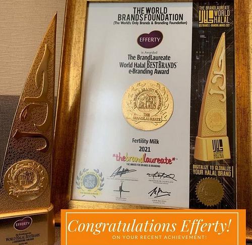 World-Halal-Best-Brands-E-Branding-Award