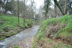 Amb les pluges i la nevada, no ens podem queixar de manca d'aigua. Els cursos d'aigua estan macos.