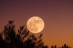 luna 3 ciencia para escritores como escribir una novela de fantasias la influencia de la luna sobre la tierra hombre lobo