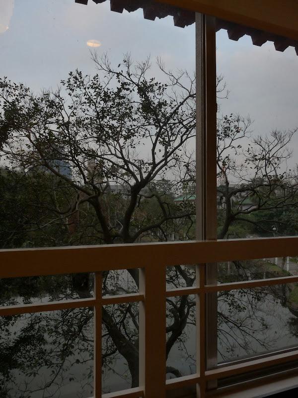 l'un des cafés sympa au Musée national d histoire qui donne sur le jardin botanique
