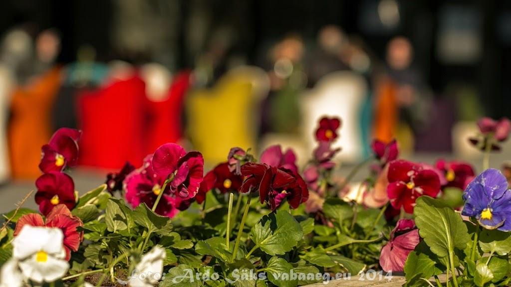 2014.04.16 Alma Linnasprint 2014-I Tallinna etapp - AS20140416LSTLN_051S.JPG