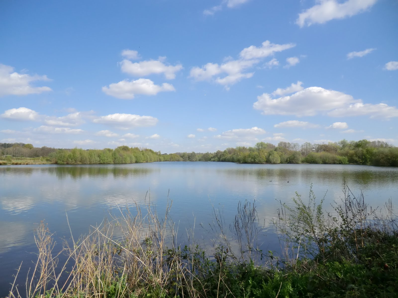 CIMG0492 Moor Green Lakes