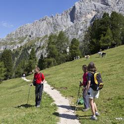 Wanderung Hanicker Schwaige 29.08.16-0138.jpg