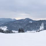 Winter Lubnik - Vika-0610.jpg