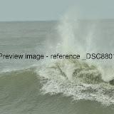 _DSC8801.JPG