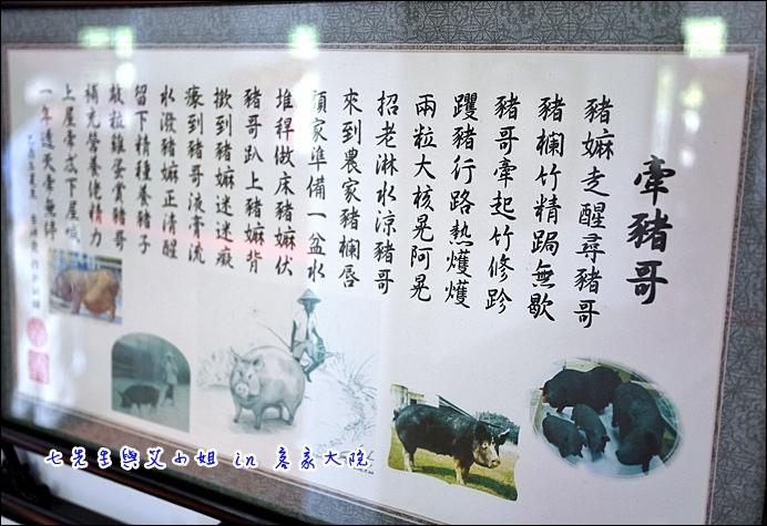 19 牽豬哥