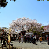 2014 Japan - Dag 7 - tom-SAM_0466-0036.JPG