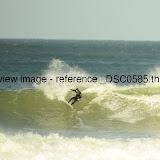 _DSC0585.thumb.jpg