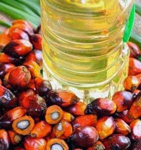 Olio di palma raffinato e frutti con semi visibili