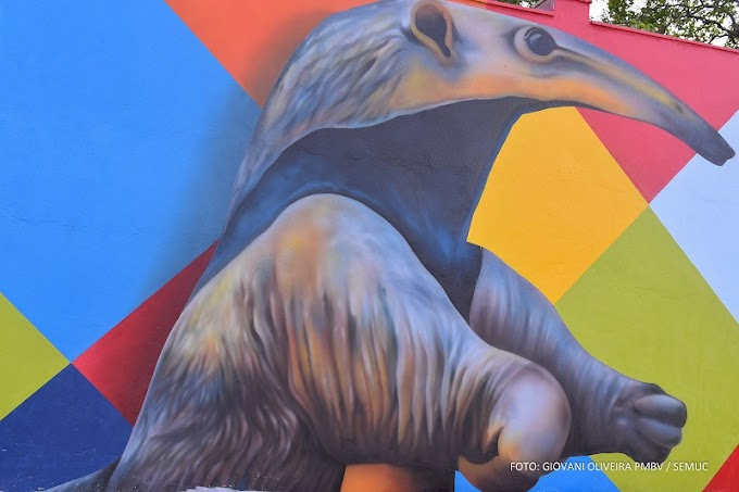 Mural do Parque do Rio Branco reúne 35 obras de artistas diversos