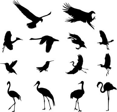 [various_birds_silhouettes_vector_set_546205%5B3%5D]