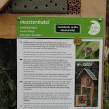Отель для насекомых. Для того, чтобы полезные насекомые - божьи коровки, жужелицы, пожарники,  бабочки, пчелы, пауки могли найти себе место для зимовки.