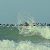_DSC0023.thumb.jpg