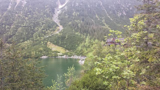 Zajęcia terenowe w Tatrzańskim Parku Narodowym - 2014-06-02%2B12.54.18.jpg