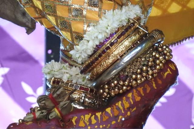 Radha Govinda Devji Deity Darshan 23 April 2016 (1)