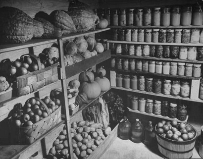 food stored in cellar