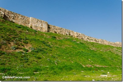 Amman citadel fortification eastern wall, tb031115005