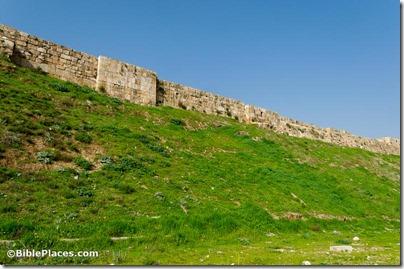 Amman citadel fortification eastern wall, tb031115005
