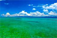 Lag-It Beach Bais