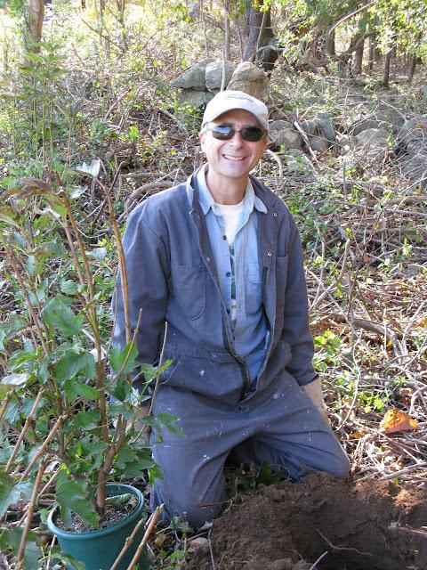 Guilford Salt Meadows Sanctuary Planting - IMG_7805.JPG