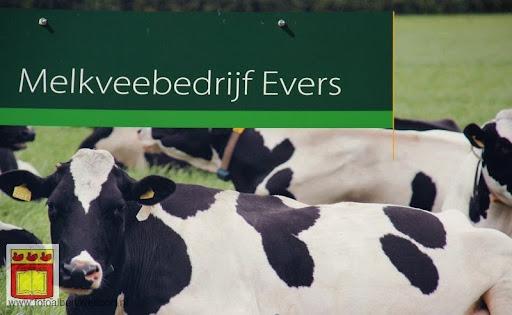 open boerderijdag Vierlingsbeek 28-05-2012 (31).JPG
