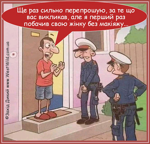 Карикатури про жінок