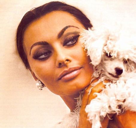 beauty legends sophia loren - Sophia Loren Hair Color