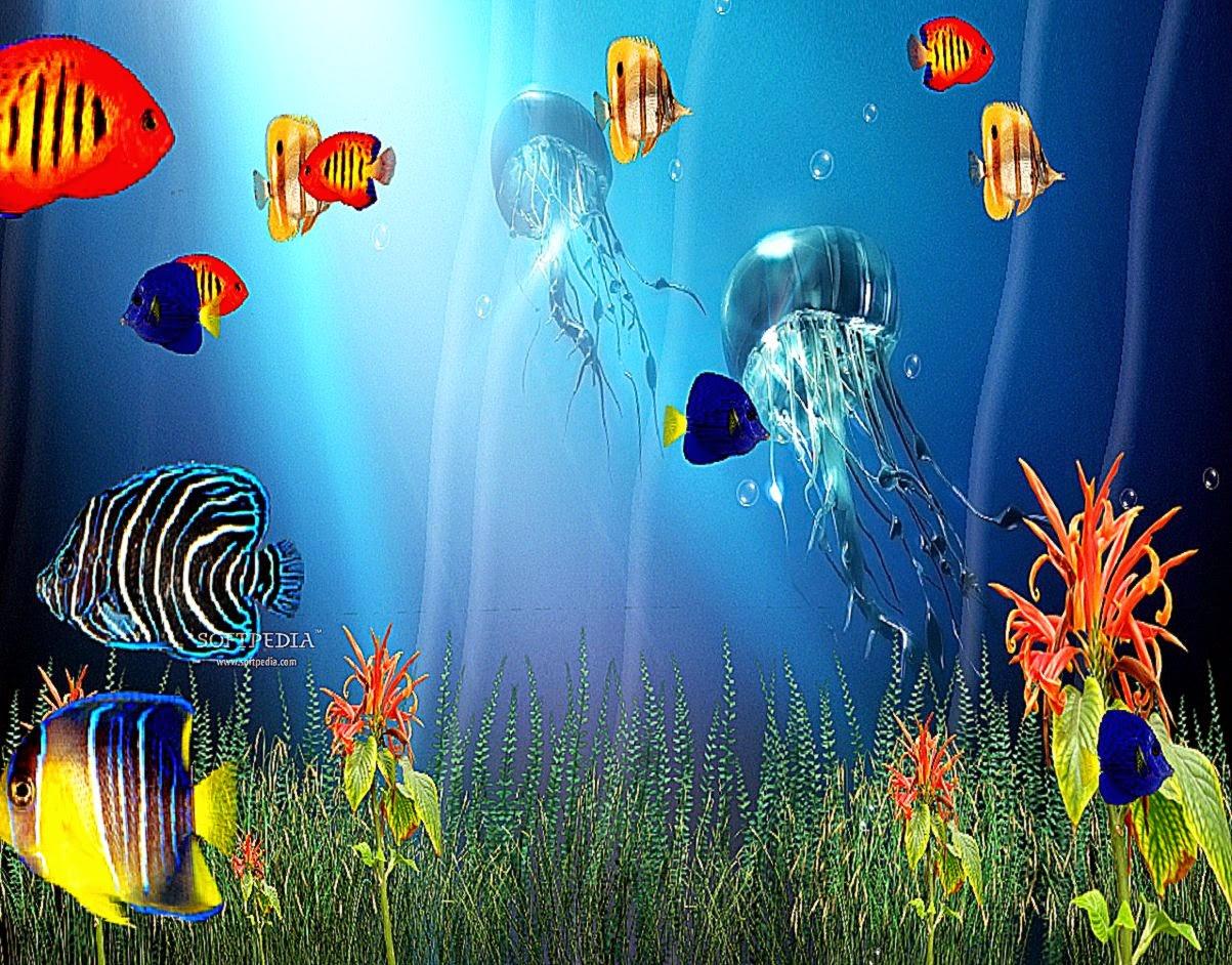 3d sea life screensaver wallpaper best free hd wallpaper