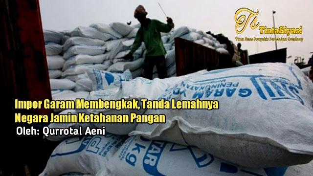 Impor Garam Membengkak, Tanda Lemahnya Negara Jamin Ketahanan Pangan