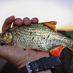 20140705_Fishing_Prylbychi_001.jpg