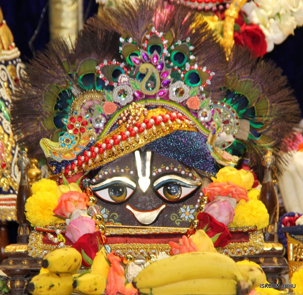ISKCON Juhu Sringar Deity Darshan on 24th September 2016 (13)