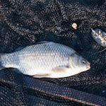 20140517_Fishing_Bochanytsia_010.jpg