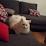 Chabbey Romaine's profile photo