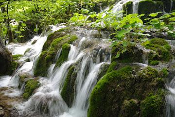Kleiner moosbewachsener Wasserfall